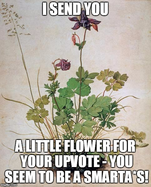 I SEND YOU A LITTLE FLOWER FOR YOUR UPVOTE - YOU SEEM TO BE A SMARTA*S! | made w/ Imgflip meme maker
