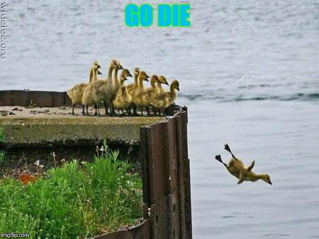 baby ducks | GO DIE | image tagged in baby ducks | made w/ Imgflip meme maker