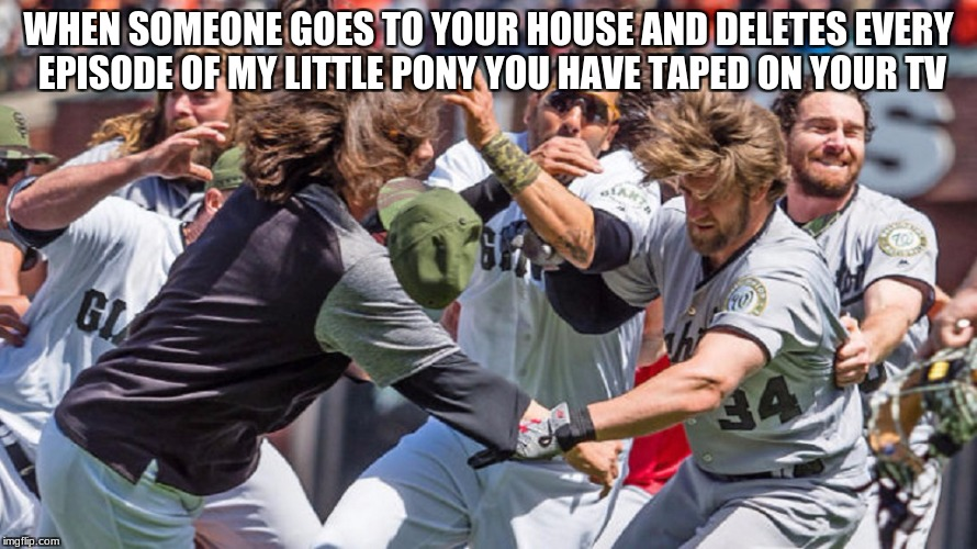 WHEN SOMEONE GOES TO YOUR HOUSE AND DELETES EVERY EPISODE OF MY LITTLE PONY YOU HAVE TAPED ON YOUR TV | image tagged in mlb fight | made w/ Imgflip meme maker
