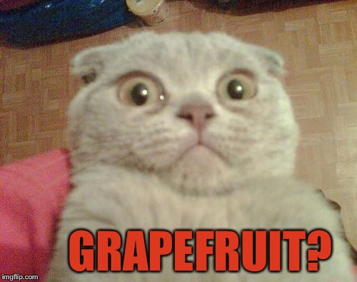 Stunned Cat | GRAPEFRUIT? | image tagged in stunned cat,memes,grapefruit | made w/ Imgflip meme maker
