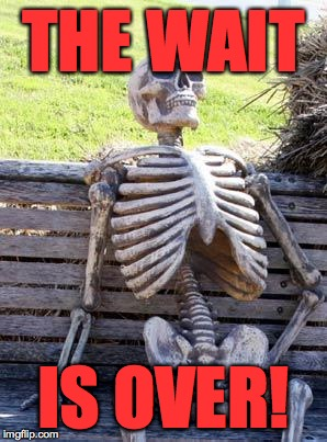 Waiting Skeleton Meme | THE WAIT IS OVER! | image tagged in memes,waiting skeleton | made w/ Imgflip meme maker