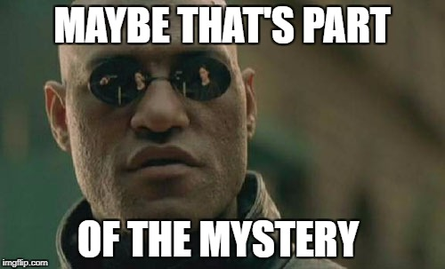 Matrix Morpheus Meme | MAYBE THAT'S PART OF THE MYSTERY | image tagged in memes,matrix morpheus | made w/ Imgflip meme maker