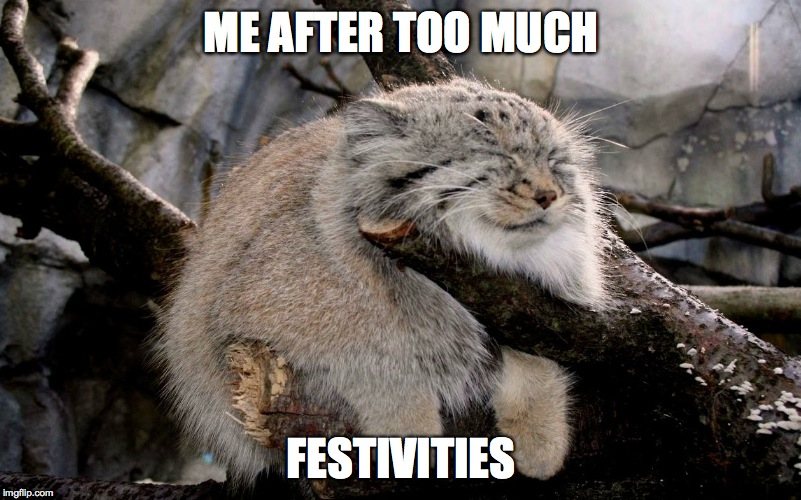 ME AFTER TOO MUCH FESTIVITIES | made w/ Imgflip meme maker