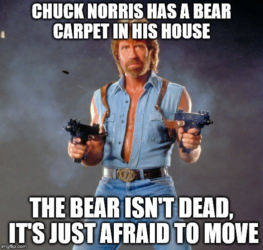 Chuck Norris Guns Meme | CHUCK NORRIS HAS A BEAR CARPET IN HIS HOUSE THE BEAR ISN'T DEAD, IT'S JUST AFRAID TO MOVE | image tagged in memes,chuck norris guns,chuck norris | made w/ Imgflip meme maker
