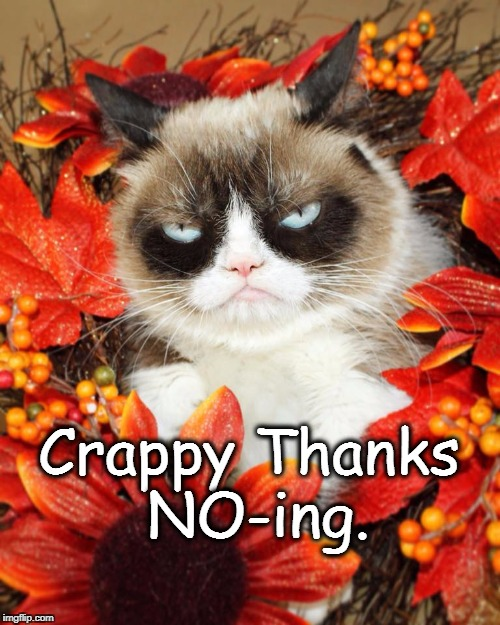 Crappy ThanksNOing | Crappy Thanks NO-ing. | image tagged in grumpy cat not amused,thanksgiving,thanks for nothing | made w/ Imgflip meme maker