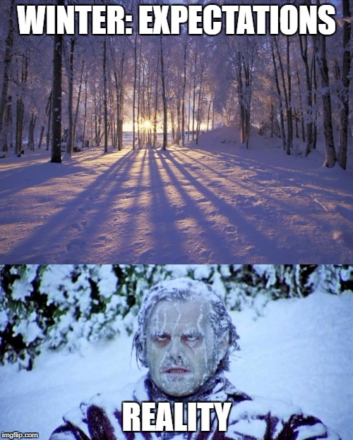 Winter | WINTER: EXPECTATIONS REALITY | image tagged in memes,funny memes,expectation vs reality,winter is coming,mr freeze | made w/ Imgflip meme maker