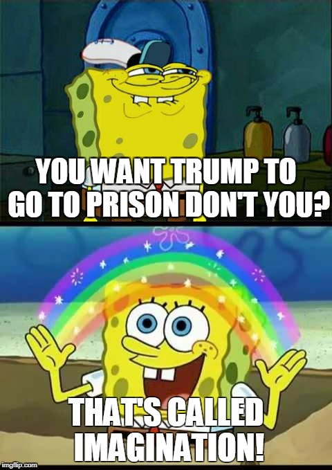 YOU WANT TRUMP TO GO TO PRISON DON'T YOU? THAT'S CALLED IMAGINATION! | made w/ Imgflip meme maker