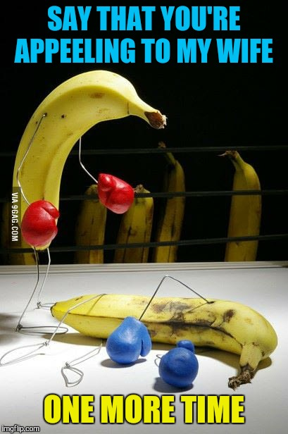 SAY THAT YOU'RE APPEELING TO MY WIFE ONE MORE TIME | image tagged in memes,funny,bananas,boxing | made w/ Imgflip meme maker