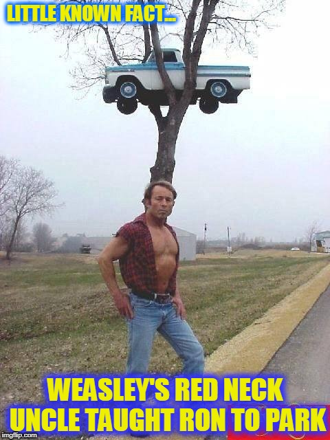 Harry Potter trivia... Redneck style | LITTLE KNOWN FACT... WEASLEY'S RED NECK UNCLE TAUGHT RON TO PARK | image tagged in harry potter,ron weasley,red neck,flying car | made w/ Imgflip meme maker