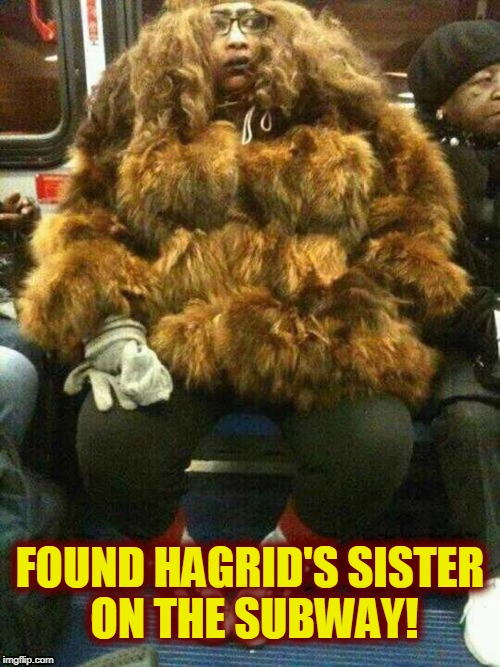 You find the strangest things on the subway! | FOUND HAGRID'S SISTER ON THE SUBWAY! | image tagged in hagrid,harry potter | made w/ Imgflip meme maker