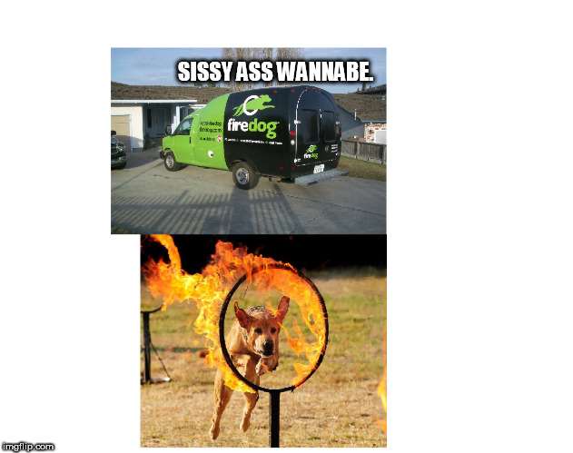 sissy ass wanabe fire dog | SISSY ASS WANNABE. | image tagged in wannabe fire dog | made w/ Imgflip meme maker