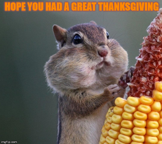 HOPE YOU HAD A GREAT THANKSGIVING | made w/ Imgflip meme maker
