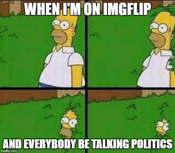 Fun lasts 5 seconds on the internet | WHEN I'M ON IMGFLIP AND EVERYBODY BE TALKING POLITICS | image tagged in homer simpson in bush - large,politics,internet,memes | made w/ Imgflip meme maker