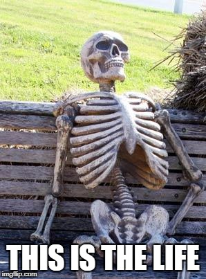 Waiting Skeleton Meme | THIS IS THE LIFE | image tagged in memes,waiting skeleton | made w/ Imgflip meme maker
