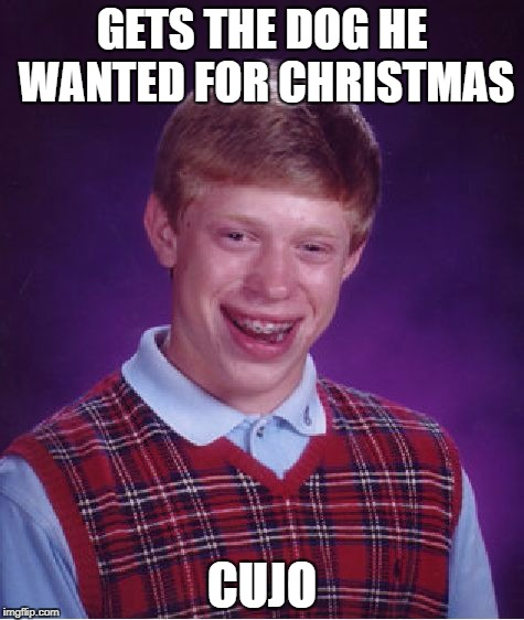 Woof woof! | GETS THE DOG HE WANTED FOR CHRISTMAS CUJO | image tagged in memes,bad luck brian | made w/ Imgflip meme maker