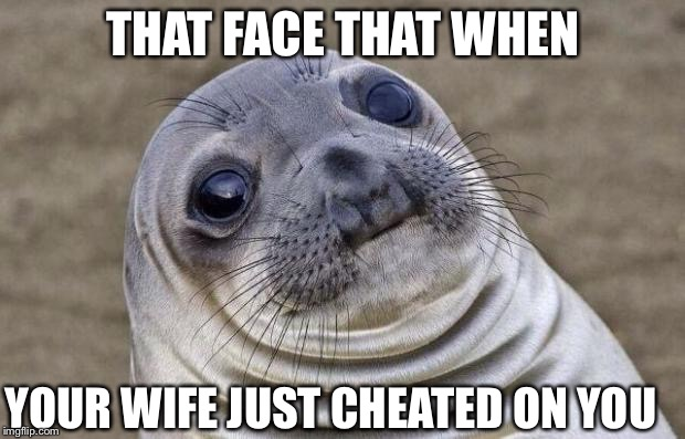 Awkward Moment Sealion Meme | THAT FACE THAT WHEN YOUR WIFE JUST CHEATED ON YOU | image tagged in memes,awkward moment sealion | made w/ Imgflip meme maker