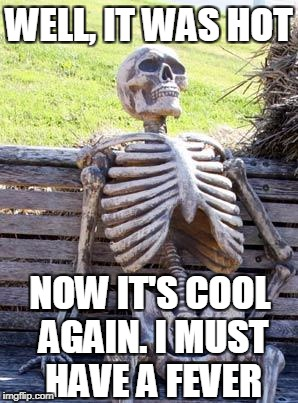 Waiting Skeleton Meme | WELL, IT WAS HOT NOW IT'S COOL AGAIN. I MUST HAVE A FEVER | image tagged in memes,waiting skeleton | made w/ Imgflip meme maker