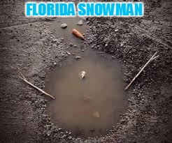 FLORIDA SNOWMAN | made w/ Imgflip meme maker