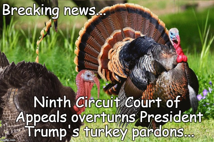 Breaking News... | Breaking news... Ninth Circuit Court of Appeals overturns President Trump's turkey pardons... | image tagged in 9th circuit court,overturns,turkey pardons | made w/ Imgflip meme maker