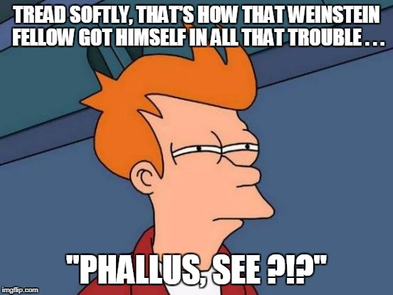 "Futurama Fry Meme | TREAD SOFTLY, THAT'S HOW THAT WEINSTEIN FELLOW GOT HIMSELF IN ALL THAT TROUBLE . . . ""PHALLUS, SEE ?!?"" 