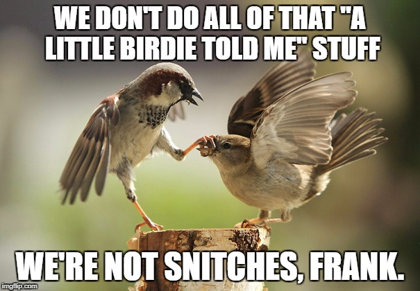 "We Don't Sing Like Canaries!  | WE DON'T DO ALL OF THAT ""A LITTLE BIRDIE TOLD ME"" STUFF WE'RE NOT SNITCHES, FRANK. 