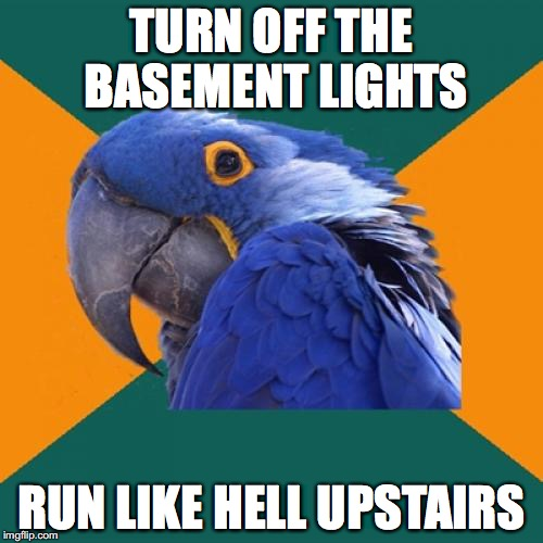 Paranoid Parrot Meme | TURN OFF THE BASEMENT LIGHTS RUN LIKE HELL UPSTAIRS | image tagged in memes,paranoid parrot | made w/ Imgflip meme maker