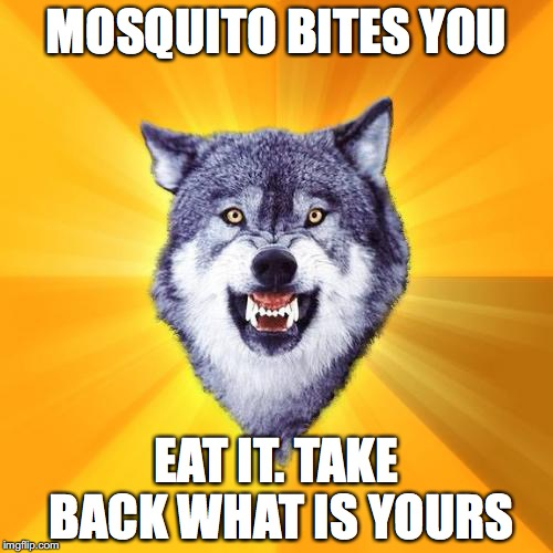 Courage Wolf | MOSQUITO BITES YOU EAT IT. TAKE BACK WHAT IS YOURS | image tagged in memes,courage wolf | made w/ Imgflip meme maker