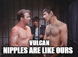 Not so different   Hope it' not offensive | VULCAN NIPPLES ARE LIKE OURS | image tagged in kirk and spock gay,star trek week | made w/ Imgflip meme maker