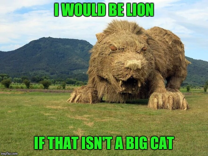 I WOULD BE LION IF THAT ISN'T A BIG CAT | made w/ Imgflip meme maker