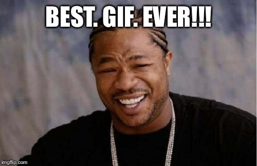 Yo Dawg Heard You Meme | BEST. GIF. EVER!!! | image tagged in memes,yo dawg heard you | made w/ Imgflip meme maker