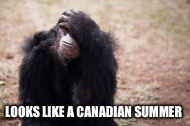 LOOKS LIKE A CANADIAN SUMMER | made w/ Imgflip meme maker
