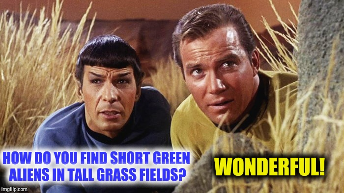 I am neither short nor green, Captain!   Star Trek Week!  A brandy_jackson, Tombstone1881 and coollew event, Nov 20-27th.  | HOW DO YOU FIND SHORT GREEN ALIENS IN TALL GRASS FIELDS? WONDERFUL! | image tagged in star trek week,spock,captain kirk,aliens | made w/ Imgflip meme maker