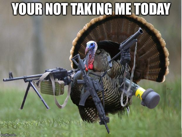turkey | YOUR NOT TAKING ME TODAY | image tagged in turkey | made w/ Imgflip meme maker