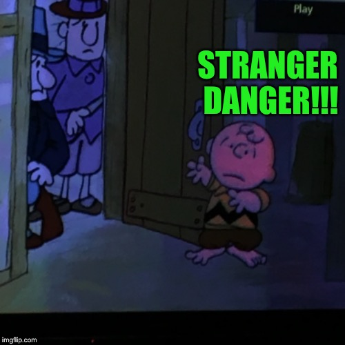 Charlie | STRANGER DANGER!!! | image tagged in gingkathfox,charlie brown | made w/ Imgflip meme maker