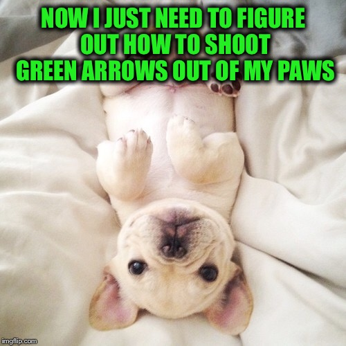 NOW I JUST NEED TO FIGURE OUT HOW TO SHOOT GREEN ARROWS OUT OF MY PAWS | made w/ Imgflip meme maker
