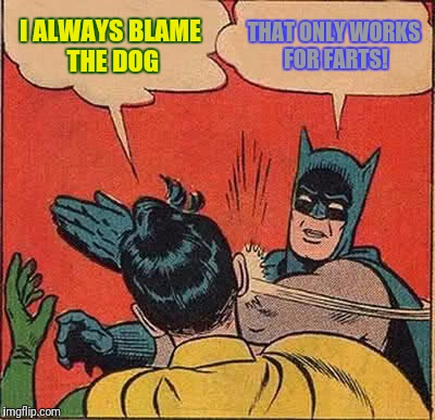 Batman Slapping Robin Meme | I ALWAYS BLAME THE DOG THAT ONLY WORKS FOR FARTS! | image tagged in memes,batman slapping robin | made w/ Imgflip meme maker