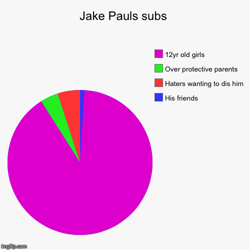 Jake Pauls subs | His friends, Haters wanting to dis him, Over protective parents, 12yr old girls | image tagged in funny,pie charts | made w/ Imgflip pie chart maker