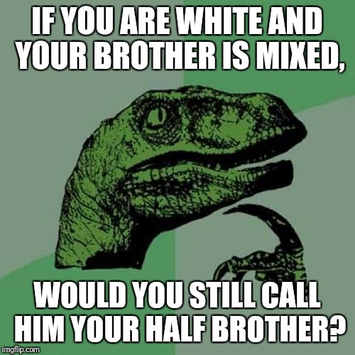 Philosoraptor Meme | IF YOU ARE WHITE AND YOUR BROTHER IS MIXED, WOULD YOU STILL CALL HIM YOUR HALF BROTHER? | image tagged in memes,philosoraptor | made w/ Imgflip meme maker