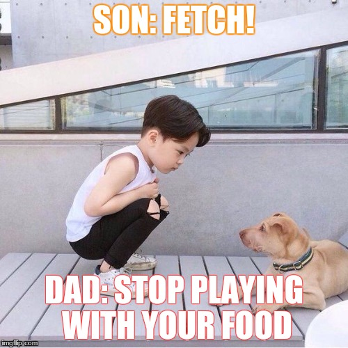 Dinner | SON: FETCH! DAD: STOP PLAYING WITH YOUR FOOD | image tagged in why not | made w/ Imgflip meme maker