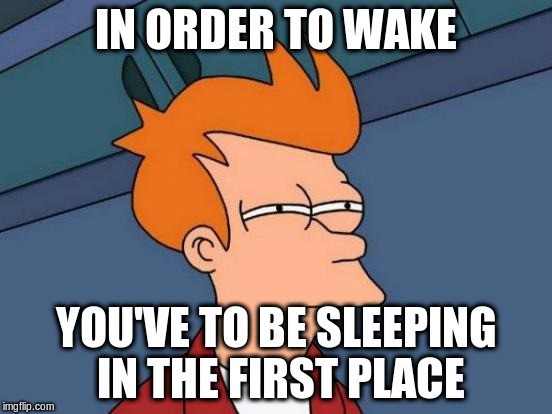 Futurama Fry Meme | IN ORDER TO WAKE YOU'VE TO BE SLEEPING IN THE FIRST PLACE | image tagged in memes,futurama fry | made w/ Imgflip meme maker