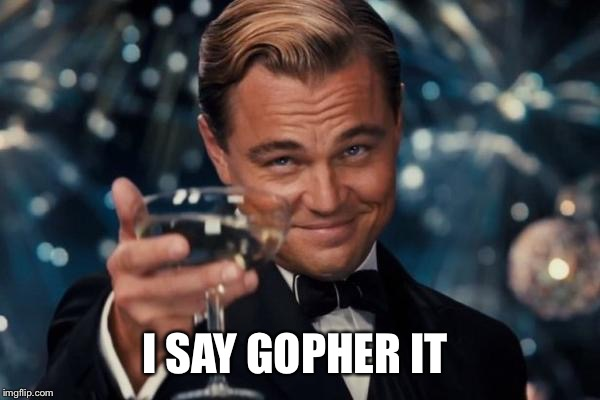 Leonardo Dicaprio Cheers Meme | I SAY GOPHER IT | image tagged in memes,leonardo dicaprio cheers | made w/ Imgflip meme maker