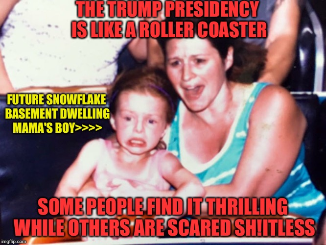Roller coaster kid | THE TRUMP PRESIDENCY IS LIKE A ROLLER COASTER SOME PEOPLE FIND IT THRILLING WHILE OTHERS ARE SCARED SH!ITLESS FUTURE SNOWFLAKE BASEMENT DWEL | image tagged in roller coaster kid | made w/ Imgflip meme maker