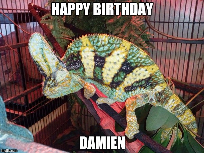 HAPPY BIRTHDAY DAMIEN | image tagged in damien | made w/ Imgflip meme maker