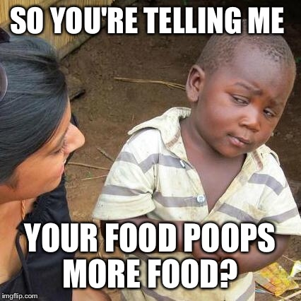 Third World Skeptical Kid Meme | SO YOU'RE TELLING ME YOUR FOOD POOPS MORE FOOD? | image tagged in memes,third world skeptical kid | made w/ Imgflip meme maker
