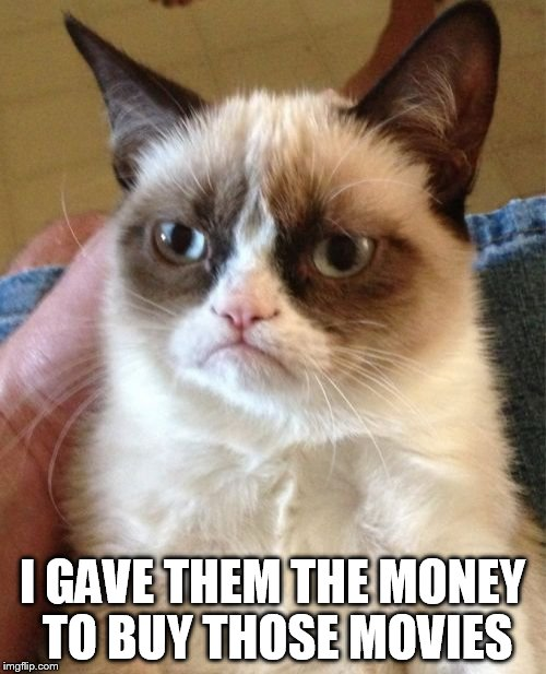 Grumpy Cat Meme | I GAVE THEM THE MONEY TO BUY THOSE MOVIES | image tagged in memes,grumpy cat | made w/ Imgflip meme maker