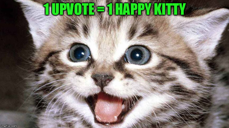1 UPVOTE = 1 HAPPY KITTY | made w/ Imgflip meme maker