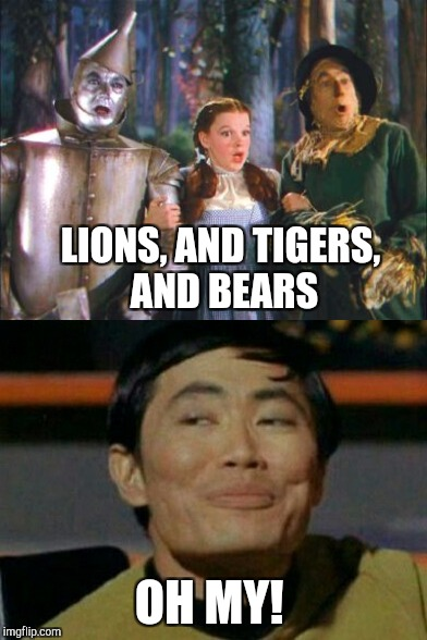 Star Trek Week, a brandy_jackson, Tombstone1881 & coollew event! Nov 20 - 27 | LIONS, AND TIGERS, AND BEARS OH MY! | image tagged in jbmemegeek,star trek week,the wizard of oz,sulu,oh my,star trek | made w/ Imgflip meme maker