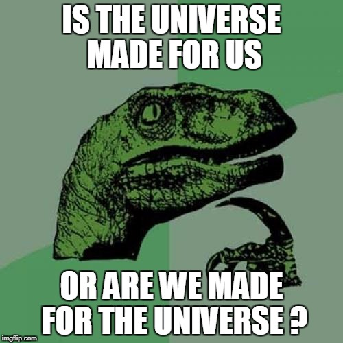 Philosoraptor Meme | IS THE UNIVERSE MADE FOR US OR ARE WE MADE FOR THE UNIVERSE ? | image tagged in memes,philosoraptor | made w/ Imgflip meme maker