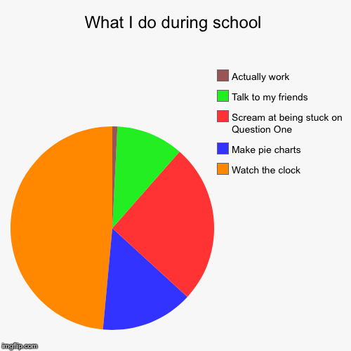What I do during school | Watch the clock, Make pie charts , Scream at being stuck on Question One, Talk to my friends, Actually work | image tagged in funny,pie charts | made w/ Imgflip pie chart maker
