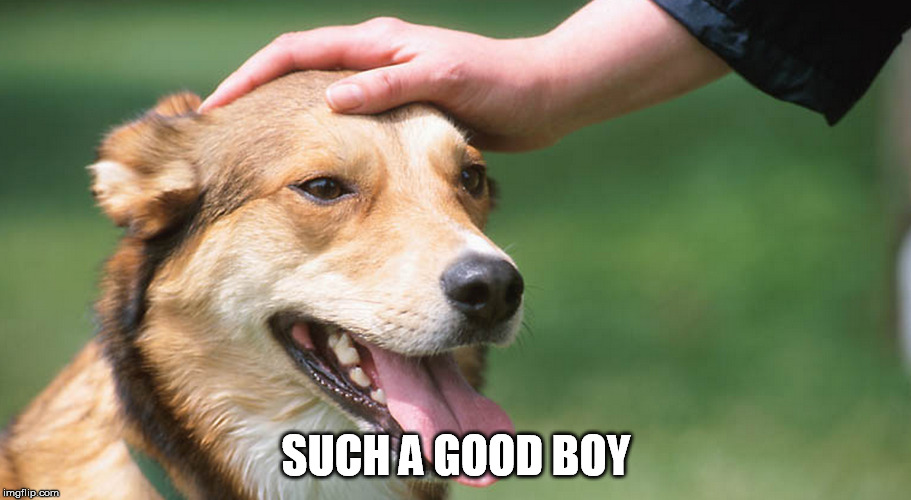 SUCH A GOOD BOY | made w/ Imgflip meme maker